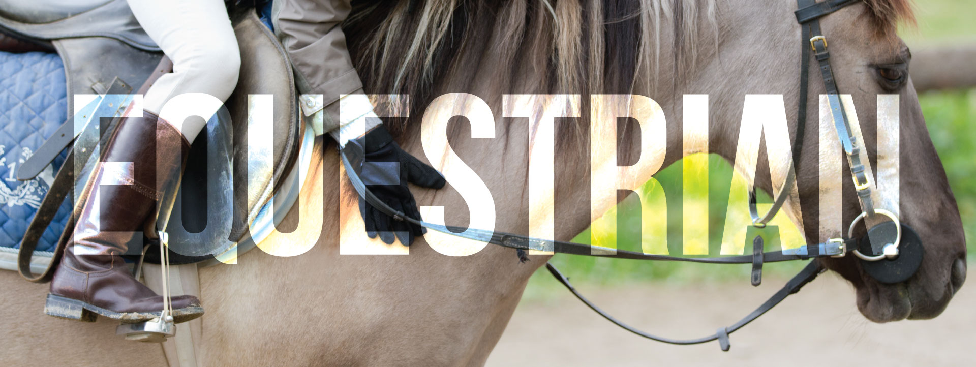 Equestrian Program